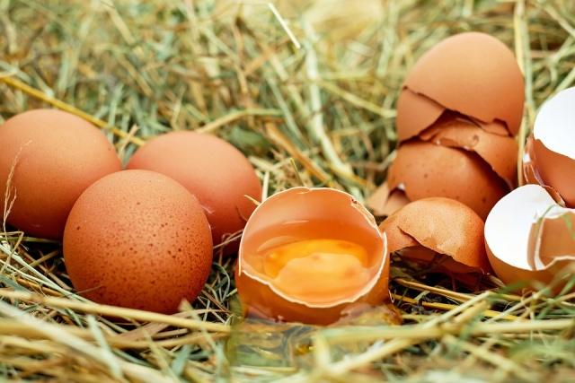 بحران تخممرغ و مسئولیت مدیران