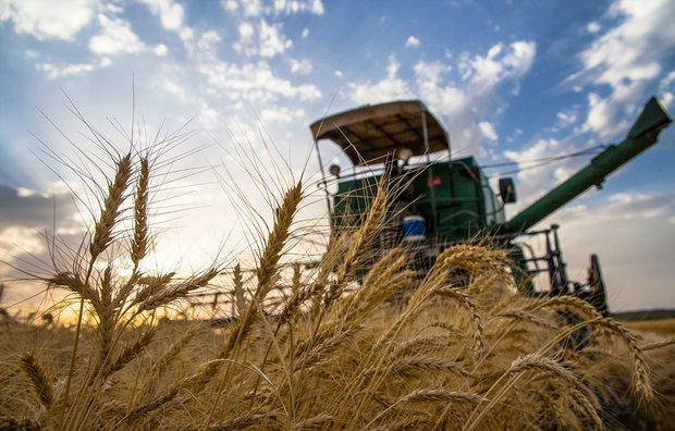 نزدیک شدن تراز تجاری کشاورزی