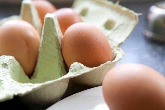 پرورش دهندگان تخم مرغ بلژیکی