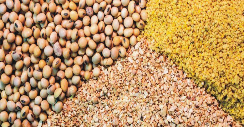 ویتامینهای مصرفی خوراک دام و طیور