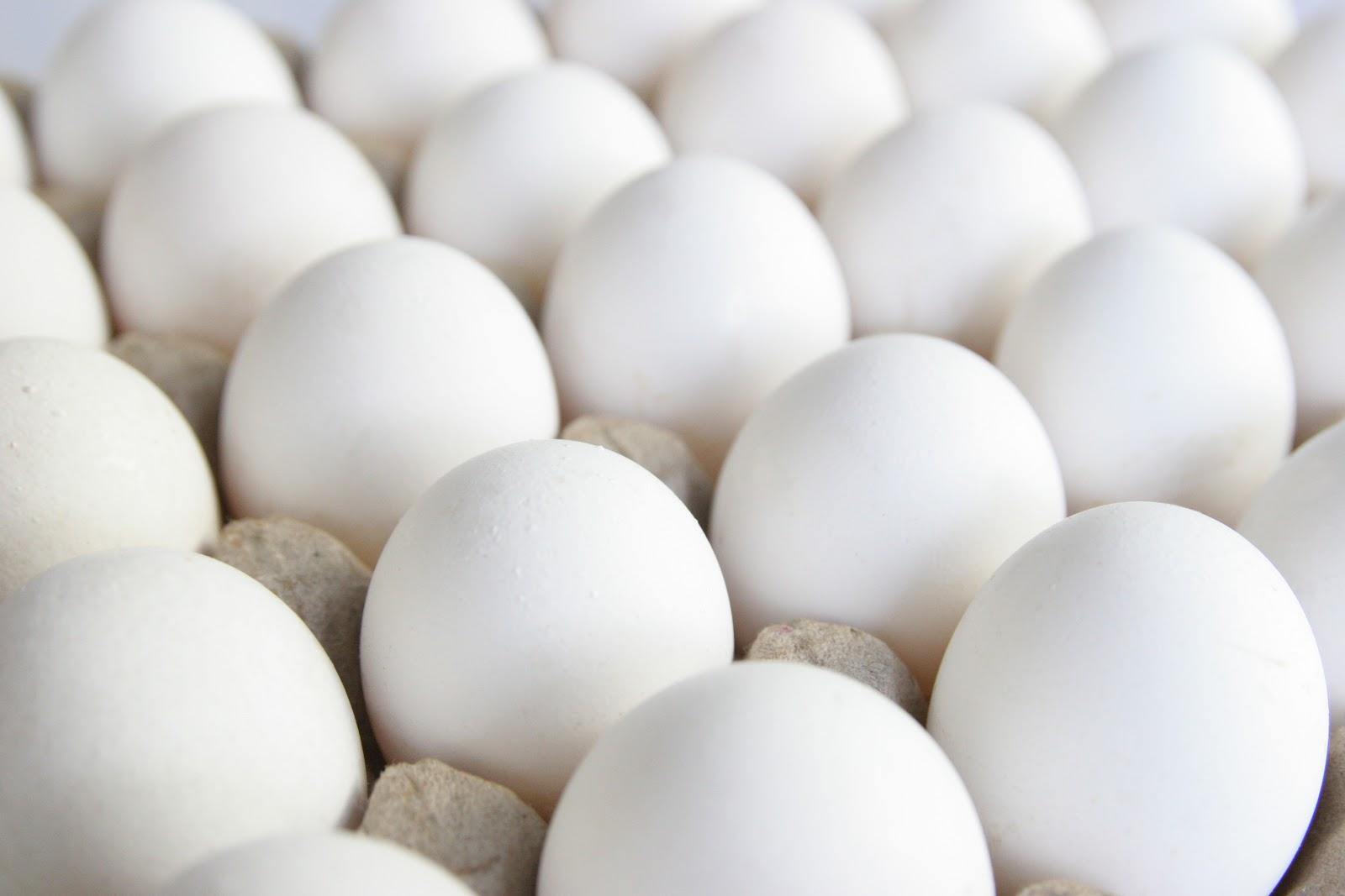 نوسانات بازار تخم مرغ