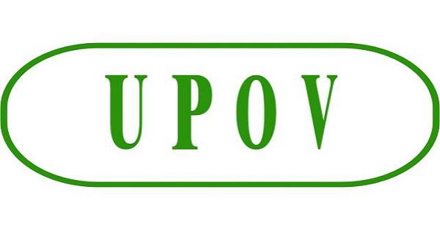 کنوانسیون بینالمللی حمایت از ارقام جدید گیاهی(upov)