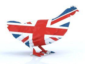 افزایش سود کشاورزی و دامپروری انگلیس