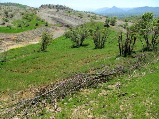 رفع تصرف اراضی فیروزکوه