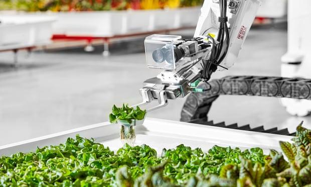 مزرعه روباتیک