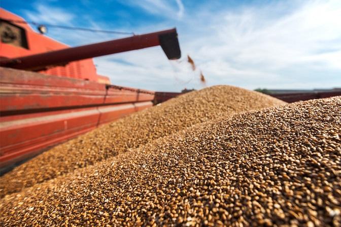 تجارت جهانی غلات