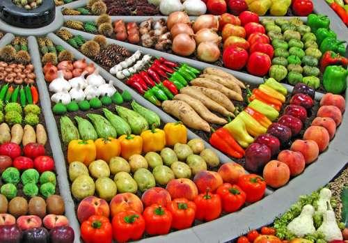 افزایش ۴ میلیون تنی ظرفیت فرآوری محصولات کشاورزی در سال