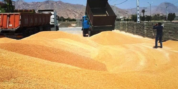 قیمت گندم و ذرتبازارهای جهانی
