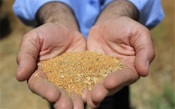 فعالیتهای تحقیقاتی غلات و دانههای روغنی