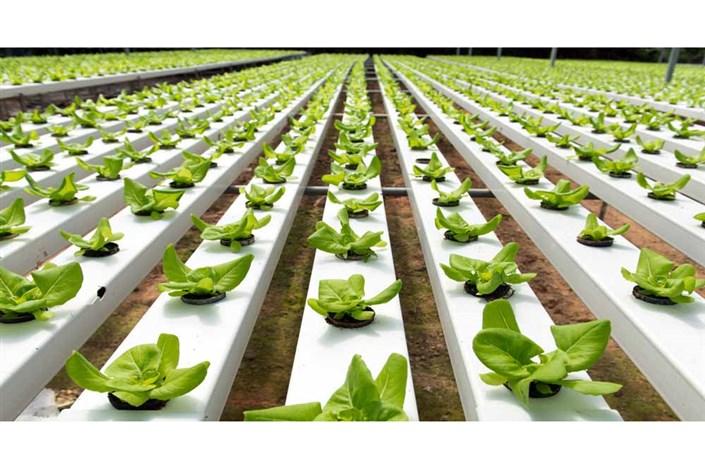 فن آوری های نوین کشاورزی