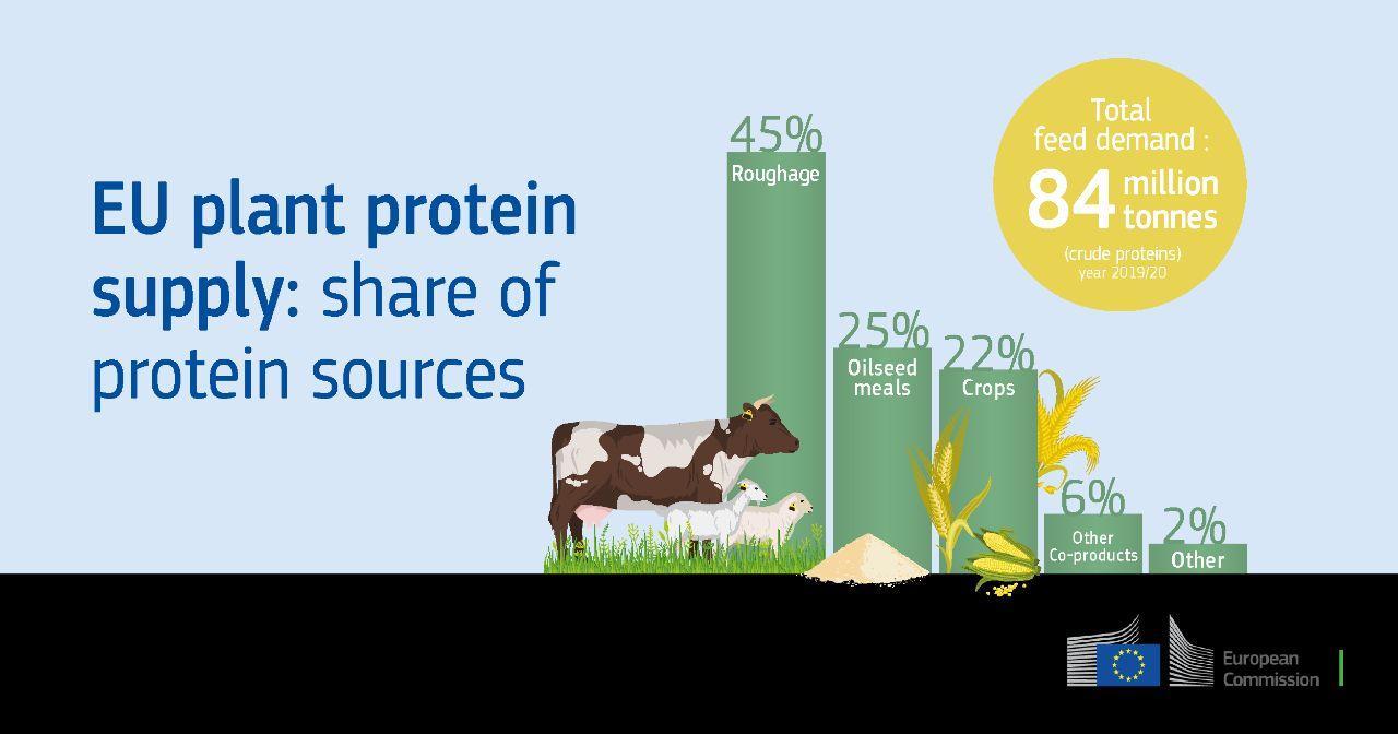 پروتئین گیاهی اتحادیه اروپا