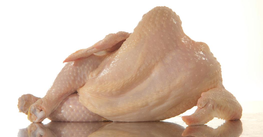 گوشت مرغ محبوبیت جهانی دارد
